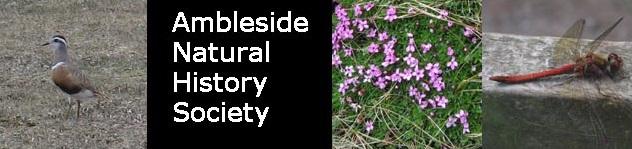 Ambleside Natural History Society
